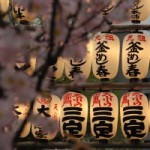 * 5 COSE (STUPIDE) DA FARE A TOKYO ::